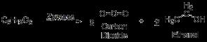 fermentation formula