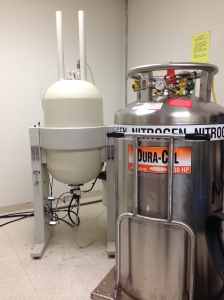 Our nuclear magnetic resonance spectrometer, AKA my one true love.
